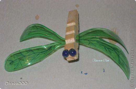 Я конечно знаю,что стрекоза это прямокрылое насекомое,но.... бутылка ведь :) фото 9