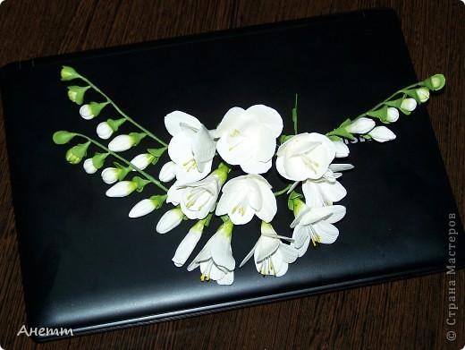 Здравствуйте мастерицы.Слепила один из самых моих любимых цветов.Большое спасибо Фиттонии за мастер класс:https://stranamasterov.ru/node/139635 фото 2
