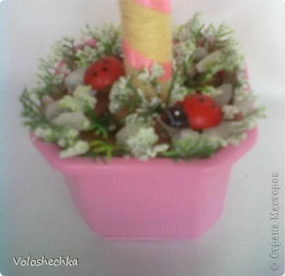 """Когда сделала эту шкатулочку https://stranamasterov.ru/node/255756  для моей любимой племянницы - крестницы, то захотелось еще """"вырастить"""" деревце в комнату юной леди :)) фото 7"""