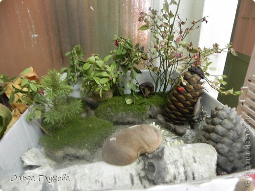 колобок - румяный бок фото 3