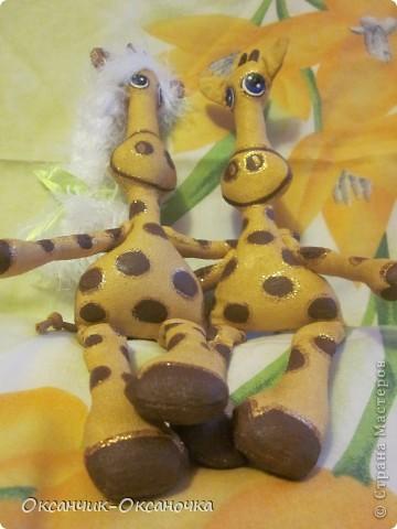 Жирафики  фото 3