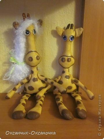 Жирафики  фото 5