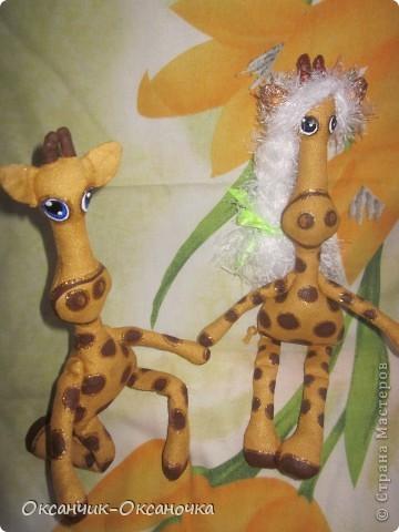 Жирафики  фото 1