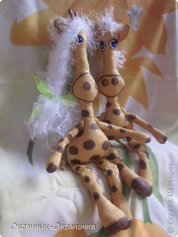 Жирафики  фото 7