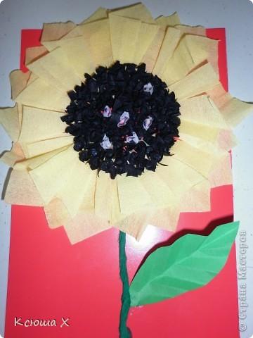 Материалы для работы: гофрированная бумага желтого, белого, зеленого и черного цвета, клей ПВА, ножницы, двусторонняя зеленая бумага, шаблоны для серединки подсолнуха и листа, картон  фото 14