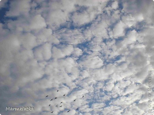 Небо... фото 1