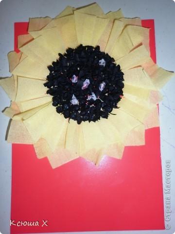 Материалы для работы: гофрированная бумага желтого, белого, зеленого и черного цвета, клей ПВА, ножницы, двусторонняя зеленая бумага, шаблоны для серединки подсолнуха и листа, картон  фото 8
