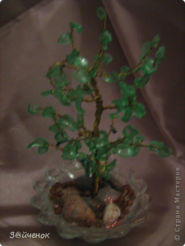 Вот такое дереввце выросло из простой бутылки, Оно совсем маленькое около 15 см. фото 4