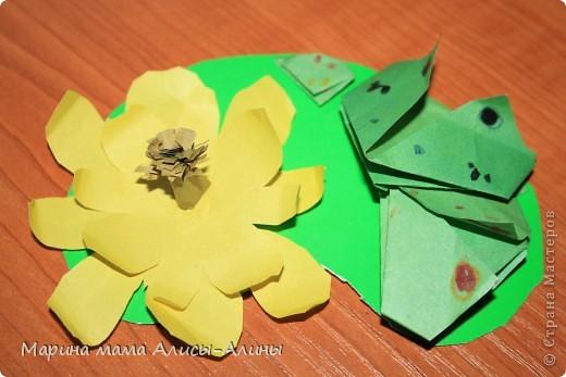 Семья лягушек фото 1