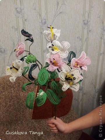 Лилии из бисера для жены брата. фото 2