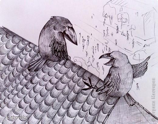 кого считают вороны фото 1