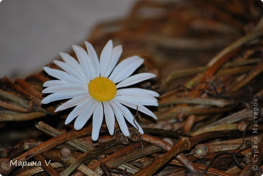 """Розы сделаны из само варенного холодного фарфора, ромашка -- из глины """"хаирти софт""""  фото 5"""