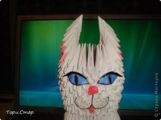 Кошечка по МК с вашего сайта, это моя вторая работа)  фото 2
