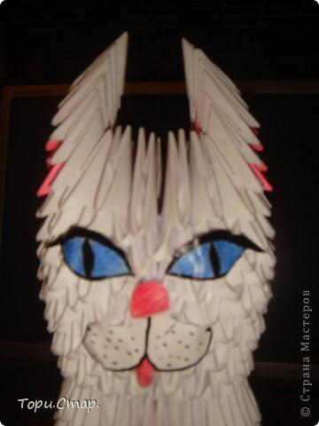 Кошечка по МК с вашего сайта, это моя вторая работа)  фото 7