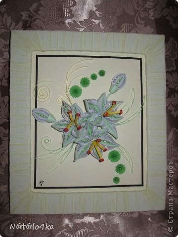 Нежные лилии. фото 2