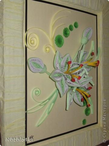 Нежные лилии. фото 1