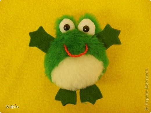 По-моему этот лягушонок готов обнять весь мир! фото 1