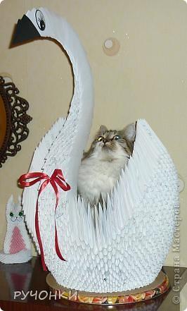 Мне тоже захотелось сделать большого лебедя. А кошка Анфиса его моментально освоила, к утру он уже был весь в шерсти!!! фото 1