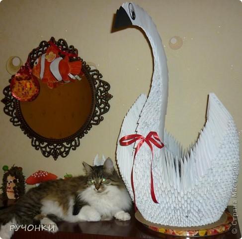 Мне тоже захотелось сделать большого лебедя. А кошка Анфиса его моментально освоила, к утру он уже был весь в шерсти!!! фото 3