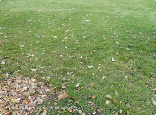 Очень люблю осеннюю природу. Когда вокруг все в желто-оранжево-красной гамме. И солнце пробивается сквозь не опавшие еще листья. Ранняя осень. фото 6