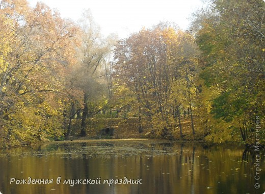 Очень люблю осеннюю природу. Когда вокруг все в желто-оранжево-красной гамме. И солнце пробивается сквозь не опавшие еще листья. Ранняя осень. фото 3