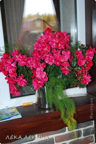 Срезала я в самом конце ноября оставшиеся в саду розы. Получилась огромная охапка. Поставила в вазу изабыла занести в дом. А ночью ударил мороз -10градусов....Утром розы были во льду.....жалко конечно...но очень красиво! Вдохновившись замершими розами сделала эту АТску. Техника для меня необычна - декупах сухоцветов. В основе веточки туи как символ НГ и новогодней елки) и засохшие бутончики тех самых последних ноябрьских роз!. Затем все это покрыто салеткой и промазано клеем. Сверху патина и белый акрил как символ снега. Просто покажу. Как АТС для обмена вряд ли пойдет, слишком объемные...и могут не дойти...но вообще как техника имеет место быть. фото 4
