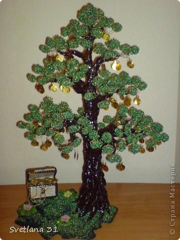 Топиарий денежное дерево своими руками