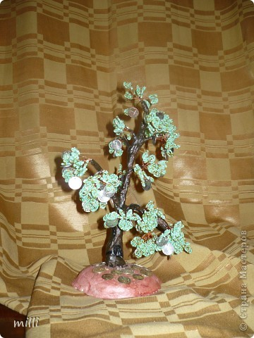 еще одно денежное деревце фото 2