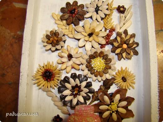 Поделки из крупы и семян своими руками фото