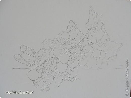Картина панно рисунок Мастер-класс Натюрморт Рисование и живопись Claret Grapes холст масло 30х40 30 11 2011-27 12 2011 мой первый мастер-класс Краска фото 2