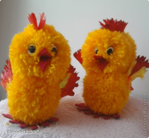 цыплята и котенок фото 2