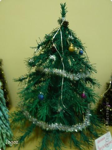 В канун Нового года в детском саду проводился конкурс ёлочек. Это ёлочки нашей группы с моей ёлкой в центре. фото 2