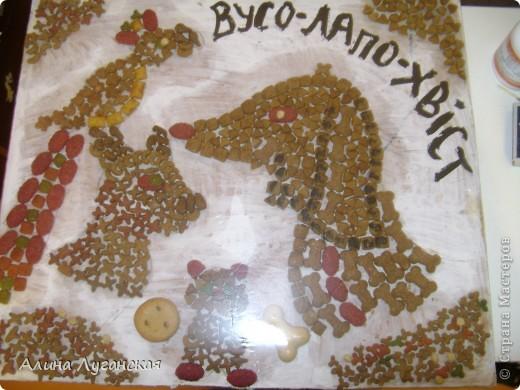 Картина из сухого корма для животных фото 2