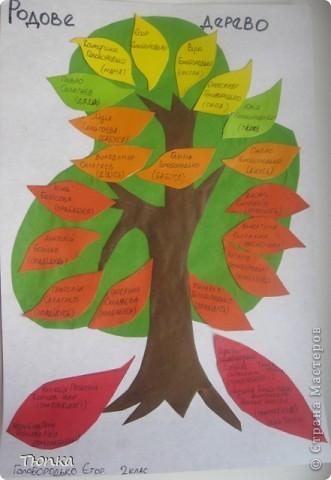 Родовое дерево | Страна
