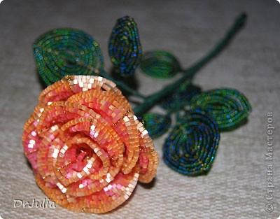 Роза из бисера. Красивая получилась. Плела с удовольствием. фото 1