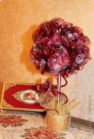 Цветочный Топиарий (Мой первый)