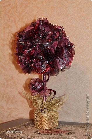 Цветочный Топиарий (Мой первый) фото 5