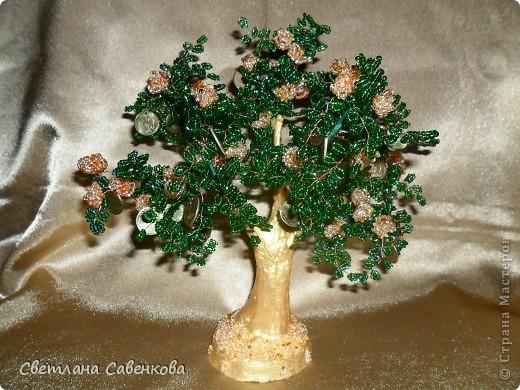 Мне очень хотелось сплести денежное дерево как оберег и символ благополучия в доме.Вот такое оно получилось.В манетах делала дырочки маленьким сверлом. фото 1