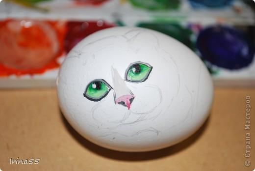 Этого кота я нарисовала под впечатлением работ Юлии Савченко. У нее коты - ОБАЛДЕННЫЕ!!! Мне тоже захотелось сделать что-нибудь приличное. Вот только камней под рукой не оказалось. Поэтому я использовала выдутое куриное яйцо. Вот такой кот у меня появился.  фото 3