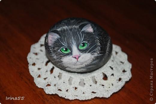 Этого кота я нарисовала под впечатлением работ Юлии Савченко. У нее коты - ОБАЛДЕННЫЕ!!! Мне тоже захотелось сделать что-нибудь приличное. Вот только камней под рукой не оказалось. Поэтому я использовала выдутое куриное яйцо. Вот такой кот у меня появился.  фото 1