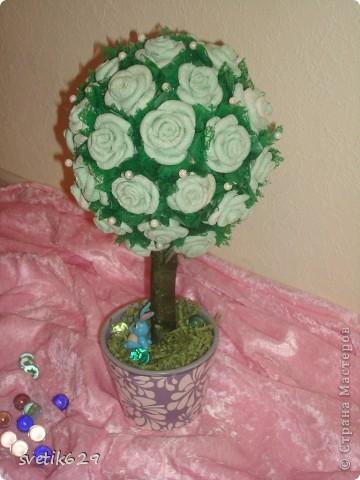 Мое первое топиари дерево) фото 3