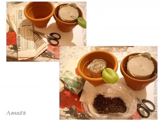 Мастер-класс Флористика Лепка фиалки мини МК Фарфор холодный фото 20