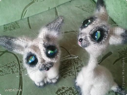Игрушка Вязание крючком Котята