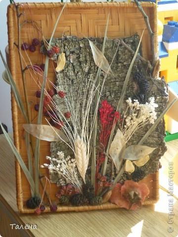 Картина панно рисунок Праздник осени Аппликация Для души - воспоминание об осени  Материал природный фото 2