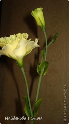 """Доброе время суток ,дорогие рукодельницы!По себе знаю как сложно порой бывает сделать красивый,ровный стебель у цветкаНа примере эустомы хочу поделиться своим способом """"приготовления""""стебля.Этим способом удобно делать стебли таких цветов как мак, тюльпан- то есть, стебли которых гладкие без листьев . Но я делаю так почти все цветы,в том числе и розы. фото 7"""