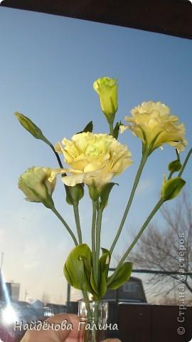 """Доброе время суток ,дорогие рукодельницы!По себе знаю как сложно порой бывает сделать красивый,ровный стебель у цветкаНа примере эустомы хочу поделиться своим способом """"приготовления""""стебля.Этим способом удобно делать стебли таких цветов как мак, тюльпан- то есть, стебли которых гладкие без листьев . Но я делаю так почти все цветы,в том числе и розы. фото 1"""