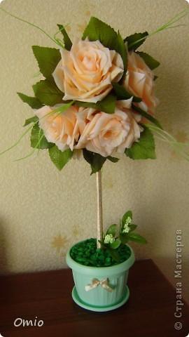 Добрый день Страна! накупила цветов, теперь не могу остановиться.... Кремово-персиковые розы - не смогла удержаться!!! следующими пойдут мои любимые лилии... фото 1