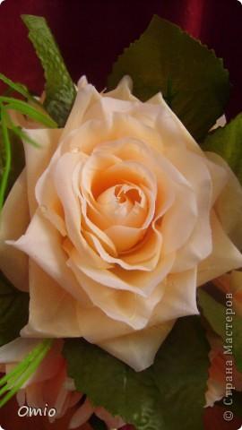 Добрый день Страна! накупила цветов, теперь не могу остановиться.... Кремово-персиковые розы - не смогла удержаться!!! следующими пойдут мои любимые лилии... фото 3