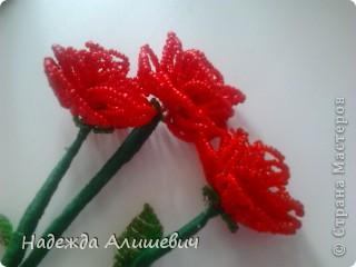 Эти розы из биссера я хочу подарить маме на 8 марта))) фото 1