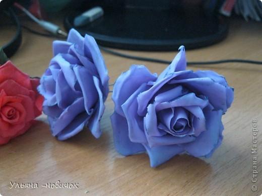 опять розы, на этот раз сиреневые фото 2